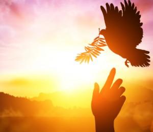 A Paz, tarefa de todos